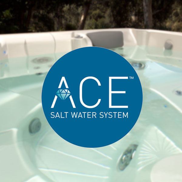 ACE salt water system logo