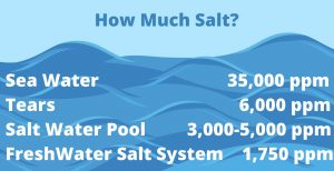 How Much Salt comparison chart