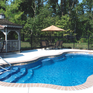 VIKING COMPOSITE POOLS Family Image